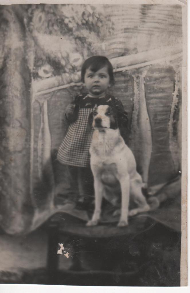 foto con cane